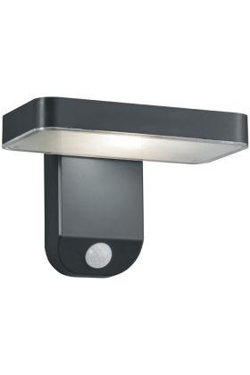 Sensorlamp Esquel Solar R22261142 antraciet 18cm